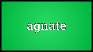 Agnate Meaning