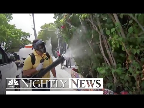 CDC Issues Travel Warning for Specific Section of Miami Over Zika | NBC Nightly News