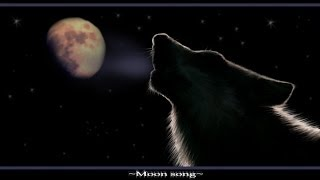 Native American (Flute & Drums) Spiritual Music *❀*