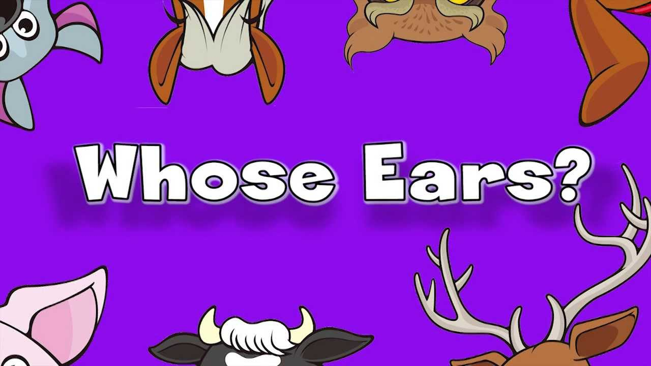 Whose Ears? | Learn Animals Song for Kids - YouTube