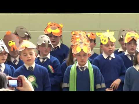 Seachtain Na Gaeilge - St Tiarnachs primary school