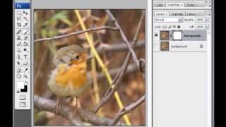 Уроки Photoshop CS4, Слой-маска.
