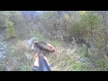Driven Wild Boar Hunting   Pissed Off Charging Boars - Ultimate Hunting video