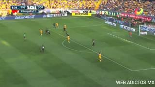 Gol de tigres vs dorados 2-1