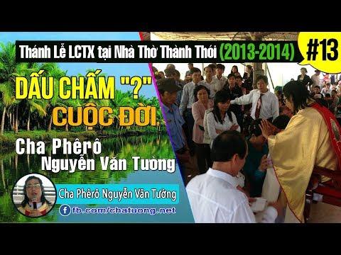 13.DẤU CHẤM HỎI CUỘC ĐỜI,Cha Phêrô Nguyễn Văn Tường,TuongTienTrung.Net,Thánh Lễ Lòng Chúa Thương Xót