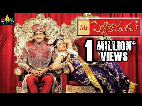 Mr.PelliKoduku Telugu Full Movie   Telugu Full Movies   Sunil, Isha Chawla