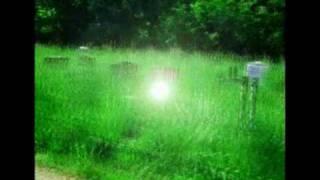 Mathew Sawyer & The Ghosts - Mynah Birds Call