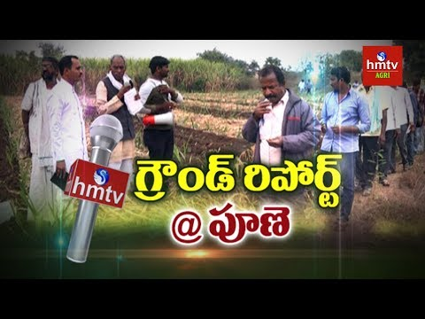 Special Report On Maharashtra Farmers Cultivation Methods   Subhash Palekar   Pune   hmtv Agri