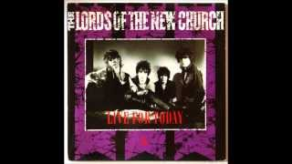 Watch Lords Of The New Church Johnny Too Bad video