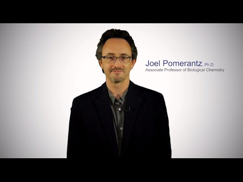 #TomorrowsDiscoveries: Understanding the Immune System— Dr. Joel Pomerantz