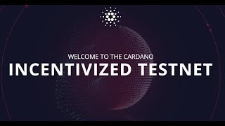 Cardano Snapshot #1 - What You Need To Know About The 'Balance Check'
