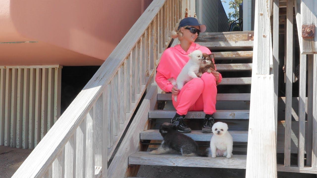 Download Paris Hilton's Home Activities: Malibu Quarantine Edition