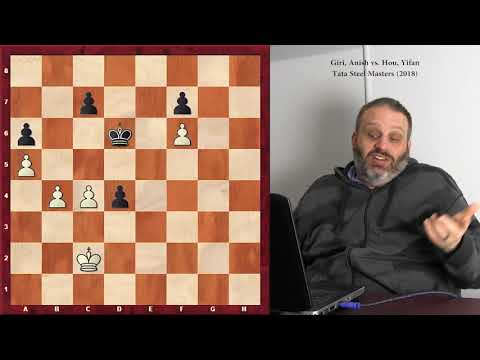 Endgames from Tata Steel Masters 2018