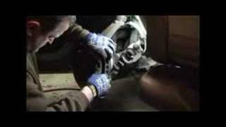 2000 Ford Expedition -- Brake Pad Replacement - Part 3