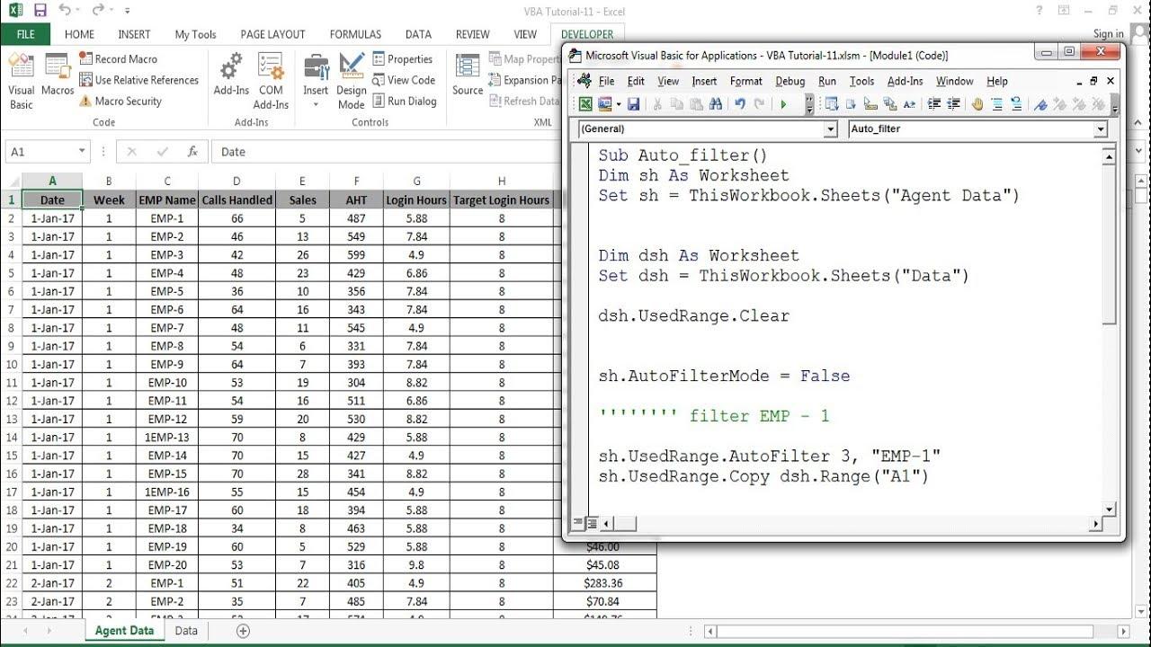 VBA Tutorial 10 Auto filter in Excel VBA