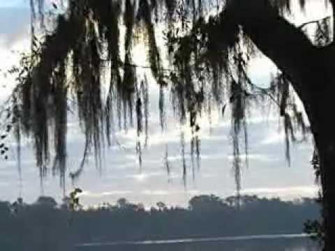 BodhiTree - Sabka Katega - Video by DJ DeepS
