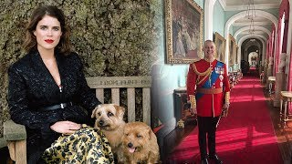 Download Video Princess Eugenie got in trouble for posting an 'off limits' photo of 'Papa' Prince Andrew MP3 3GP MP4