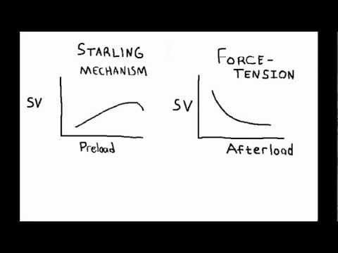 Cardiorespiratory: Frank Starling Mechanism