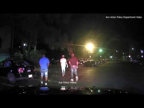 Video Prompts Accusations of Racist Policing in Michigan