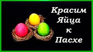 Яйца на Пасху  Как покрасить яйца к Пасхе натуральными красителями  Яркие пасхальные яйца
