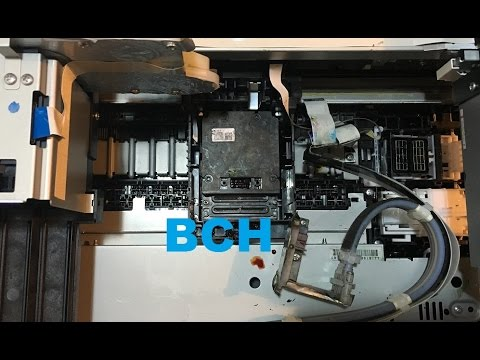 A Powerful Way to Remove and Unclog Epson Print Head Nozzles WP-4540