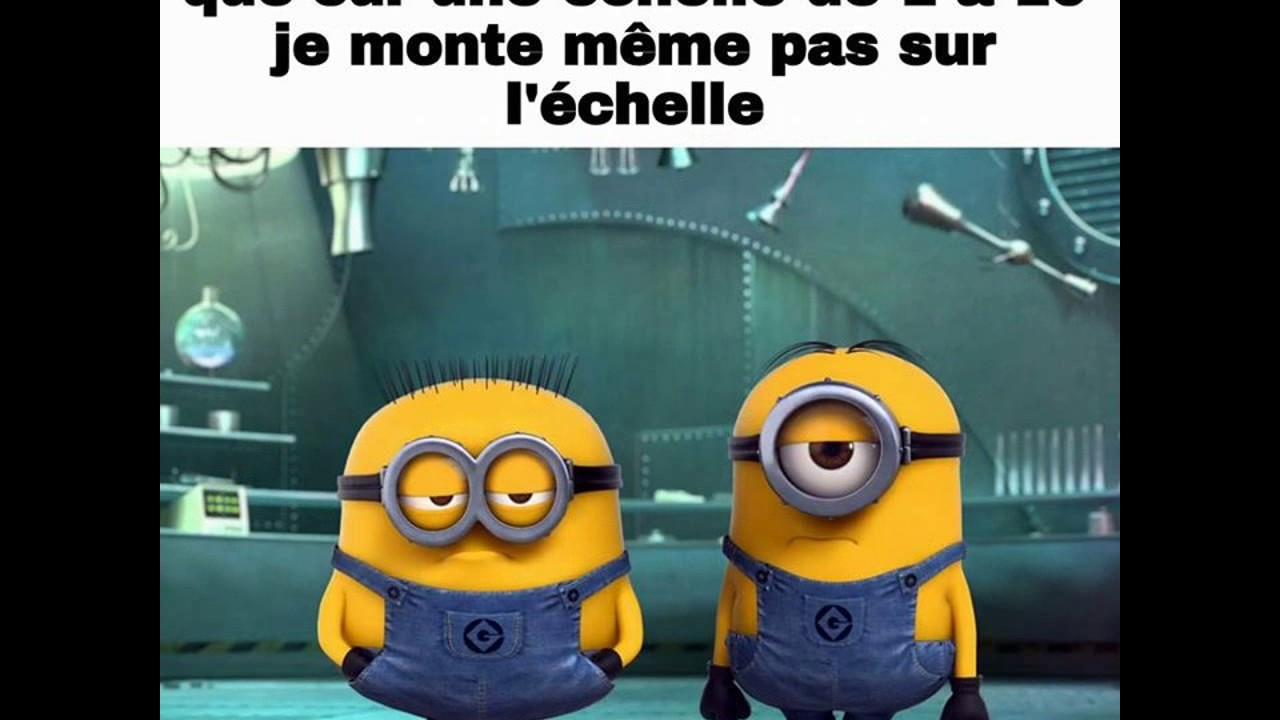 Les Citations Des Minions Youtube