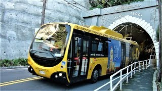 Wellington Trolleybus Scenes - 2016 -- Part 2 of 2, Outlying Areas thumbnail