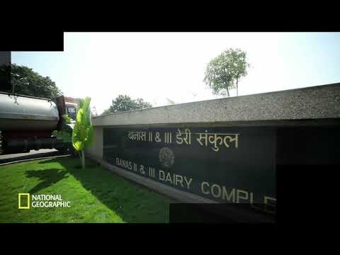 Amul dairy products || Factory work shop