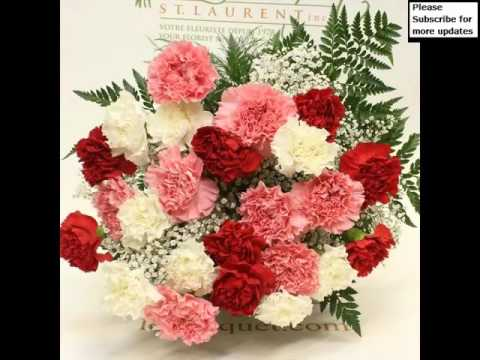 Red And White Carnation Bouquet Picture Collection Set And Ideas