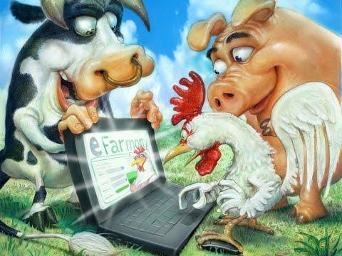 Ферма Соседи отзывы. Мой отзыв об онлайн игре Ферма соседи.