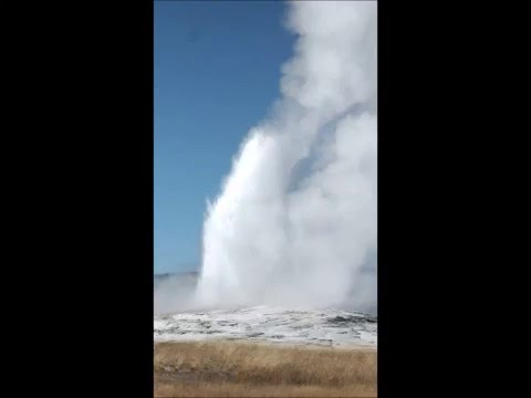 Geyser - Yellowstone