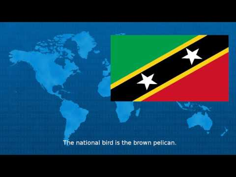 Saint Kitts And Nevis  - Wiki