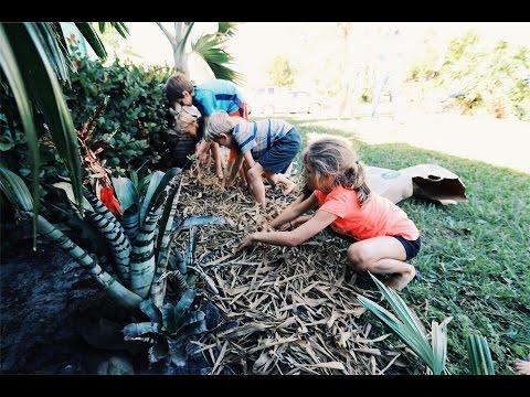 CrAzY EASY - Florida Gardening
