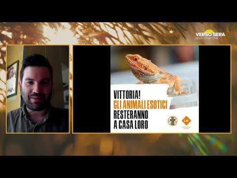 Verso Sera, 26.05.21. Misa Urbano ospita Andrea Casini, responsabile animali esotici della LAV