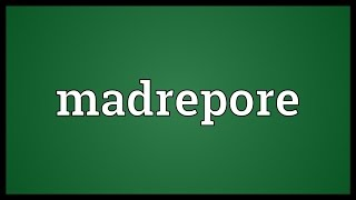 Madrepore Meaning