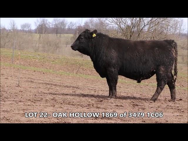 Oak Hollow Lot 22