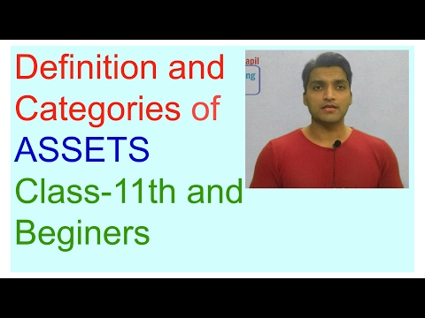 Basic Accounting Terms Class-11th, definition & meaning  ASSETS, What is ASSET Part-2