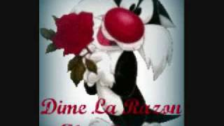Dime La Razon-Alex Rivera
