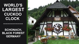 World's Largest Cuckoo Clock | Schonach, Black Forest, Germany