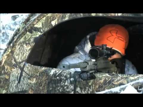 Saskatchewan Deer Hunt Special