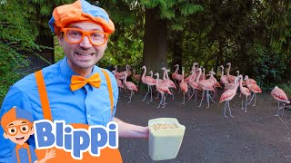 Blippi Feeds & Plays With Animals At The Zoo | Animals For Kids | Educational Videos For Kids