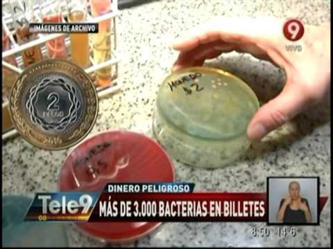 Dinero peligroso: Más de 3 mil bacterias en billetes