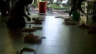 Waktunya makan! (Feeding time) part 2 of 4