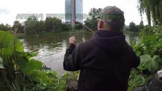 Trailer: Feedern an der Donau
