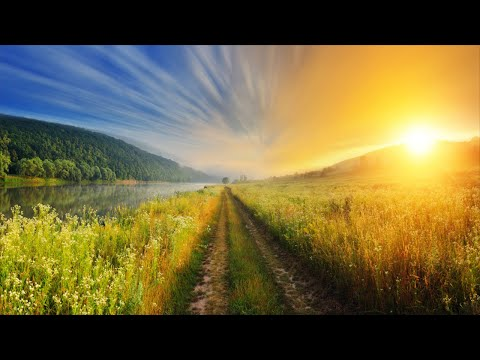 11 HOURS Relaxing Music for Stress Relief, Music for Studying, Sleep Music