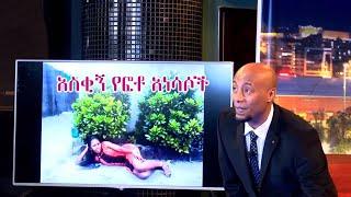 Seifu Show Funny Pic Season 4 Episode 8