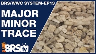 Ep13: Major, minor and trace elements for your reef tank - The BRS/WWC System
