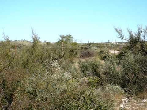 Ranchito laracuente, Amistad REalty, Del Rio Texas