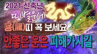 [2021년 신축년 띠별운세보기] 용띠운세!!용한점집,용한무당, 부천,일산 (녹수부인당)