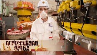 Радиация. Мирный атом | Агрессивная среда с Александрой Говорченко